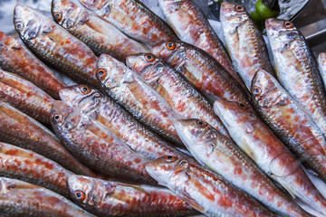 Fresh sea fish on a counter of the market in the Mediterranean
