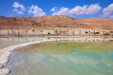 Shores of the Dead Sea in Israel