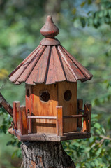 detailed bird house on a green background