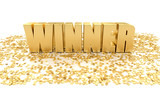 Winner with stars on white background - High quality 3D Render - 76551371