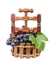 grapes in a wooden vase