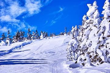 白銀のスキーゲレンデ