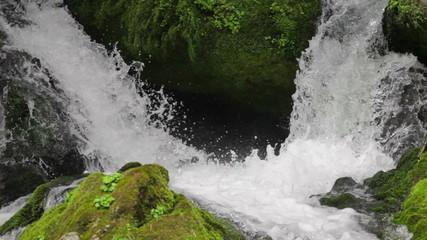 苔の岩と水しぶき