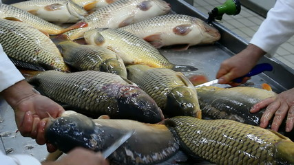 Cleaning fish carp