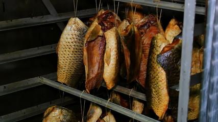 Drying fish carp