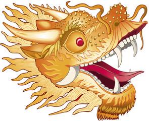 Dragon tête Illustration