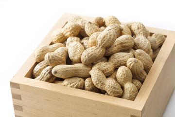 落花生 節分 peanut