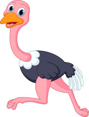 Cute ostrich cartoon running