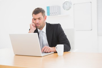 Focused businessman looking at laptop