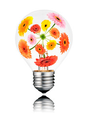 Light Bulb with Flowers Growing  Inside Isolated