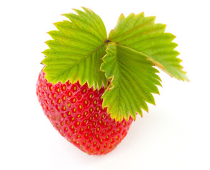 fresh strawberry with leaf isolated on white