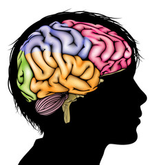 Young child brain concept
