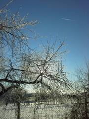 Морозный солнечный денек!