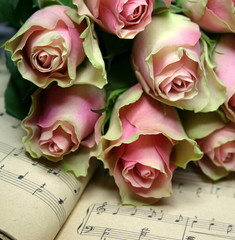 Róże i nuty