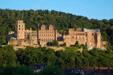 Schloss Heidelberg im Grünen