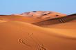 Morocco. Sand dunes of Sahara desert - 76580325