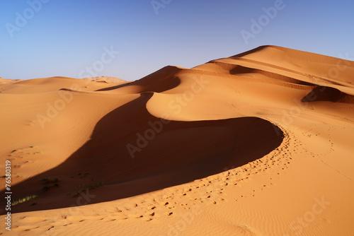 Fotobehang Marokko Morocco. Sand dunes of Sahara desert
