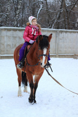 Girl on a horse in winter