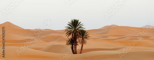Morocco. Sand dunes of Sahara desert - 76582571