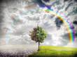 ecology landscape - 76584906