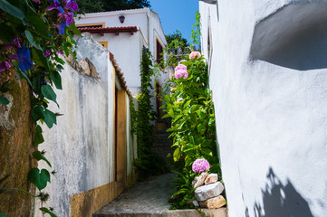 Narrow street of Sintra