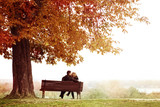 Young Couple Kissing on a Bench under the Huge Chestnut .