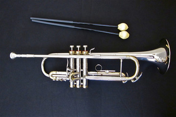 Trumpet and Mallets