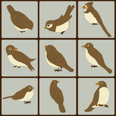 Icons set of cute  birds