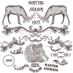 Collection of vector hand drawn animals and floral swirls for de