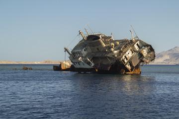 Dead Ship