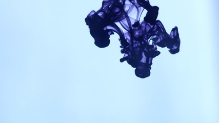 Abstract dynamic flow of violet ink in blue water on white