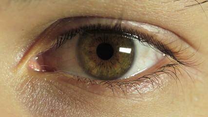 Closeup of young male eye - young man - macro