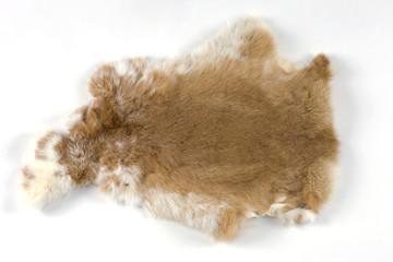 ウサギの毛皮