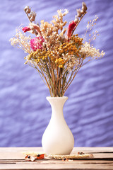 Bouquet of dried flowers in vase on colorful background