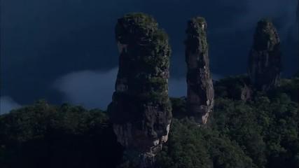 Mountain Ridge Trees Rocky