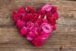 Obrazy na płótnie, fototapety, zdjęcia, fotoobrazy drukowane : heart of roses