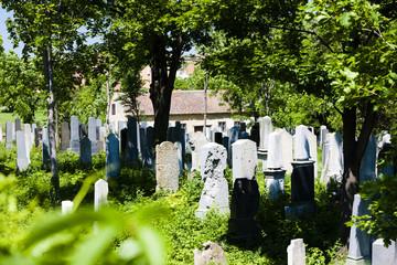 Jewish Cemetery, Miroslav, Czech Republic