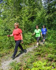 Nordic Walking im Grünen