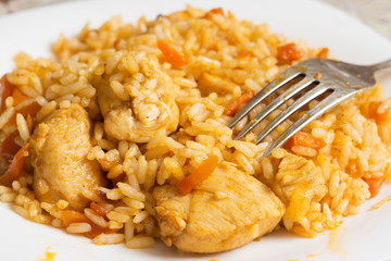 Fork lies on a plate with a delicious pilaf
