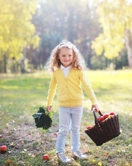 Smiling child with autumn basket having fun outdoors in warm sun