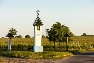 God's torture with vineyard near Velke Bilovice, Czech Republic