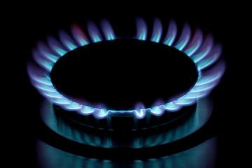 Gas burner flame
