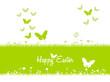 Spring butterflies and green grass