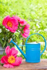 Water can in garden