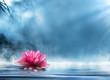Leinwanddruck Bild - spirituality zen in peaceful scenery