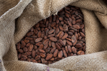 Cocoa beans in a jute bag
