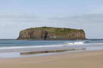 Beach at Shellharbour,Australia
