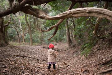 薄暗い森を歩く女の子