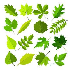 spring leaves flat style set