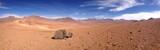 Fototapeta wüste atacama trocken